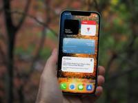 大流行减少了iPhone 12 mini的需求 使12 Pro蓬勃发展